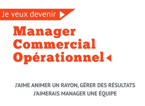 Titre Manager Commercial Opérationnel